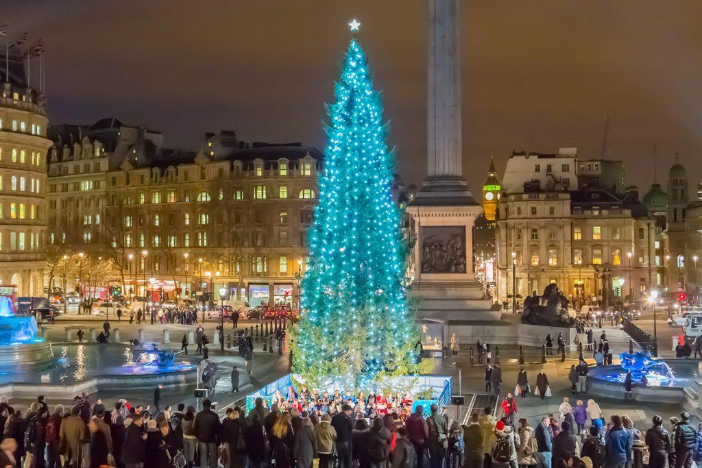 Árbol de Navidad | Plaza de Trafalgar, Reino Unido